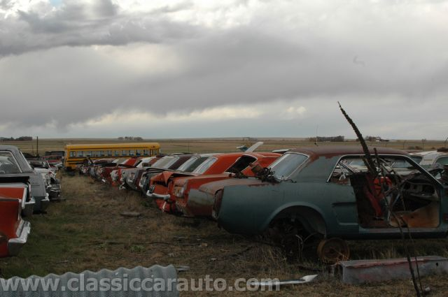 Junk Yard Tours Woller Auto Parts Lamar Colorado